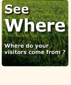 where do your visitors come from?